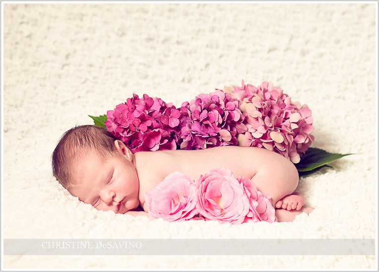 Beautiful baby girl with roses and hydrangea - NJ Baby Photographer